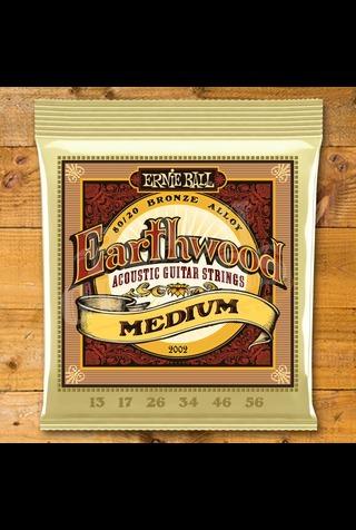 Ernie Ball Earthwood 13 - 56