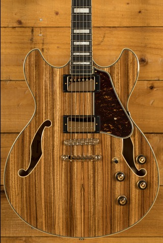 Ibanez 2019 AS93ZW-NT Natural