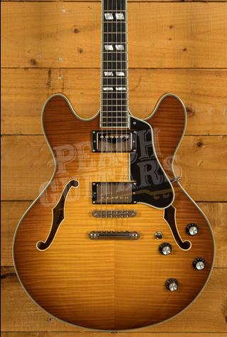 Eastman T486-Goldburst