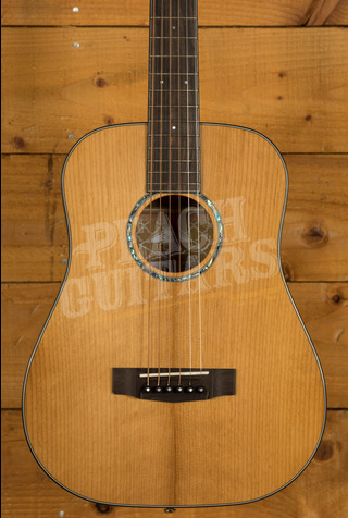 Cort Gold Acoustic Mini w/Case Natural