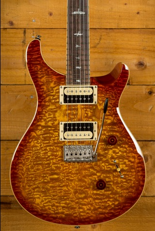 PRS SE CUSTOM 24 EXOTIC TOP - Burled Ash VS