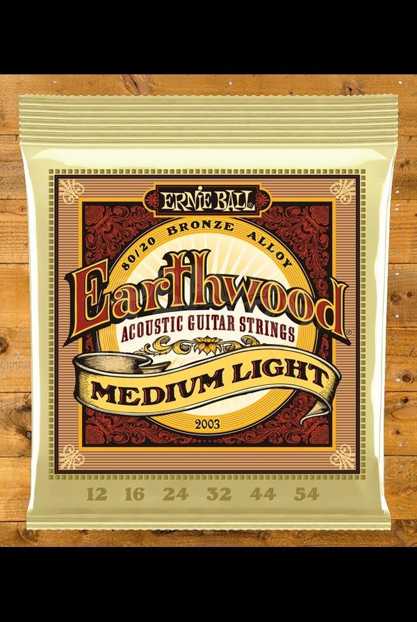 Ernie Ball Earthwood 12 - 54