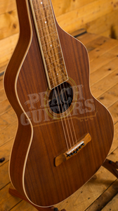 Gold Tone Weissenborn Guitar w/Bag