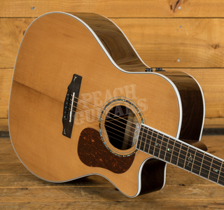 Cort Gold A8 w/case Natural