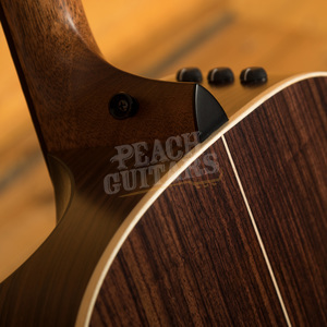 Taylor 816ce Builder Edition