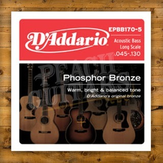 D'addario EPBB170-5 SET SET ACOUS BASS PB 45-130 5 STR