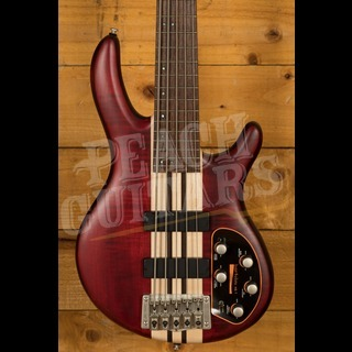 Cort A5 Plus OPBC Open Pore Black Cherry
