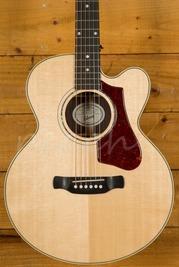 Gibson Parlor Rosewood Avant Garde