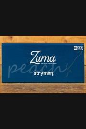 Strymon Zuma R300 Multi Power Supply