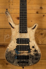 Warwick GPS Corvette $$ 5 Limited Edition with Buckeye Burl Top