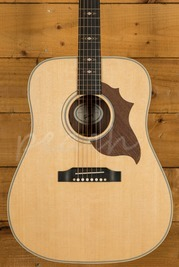 Gibson Hummingbird Sustainable