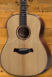 Taylor - Grand Pacific Dreadnought - Builder's Edition 517 V-Class
